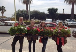 sortida-de-les-flors-verntallat